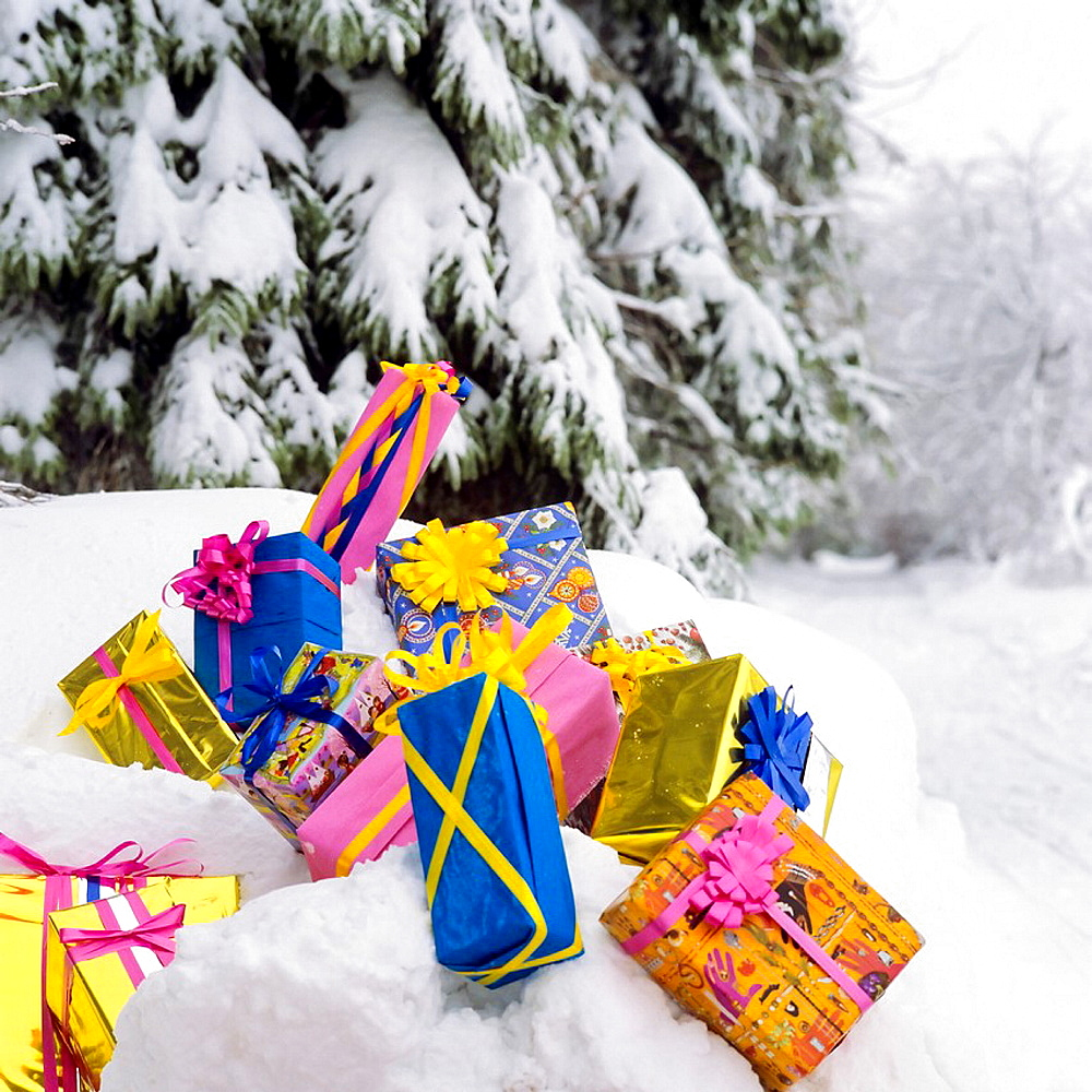 Christmas presents on snow by fir tree