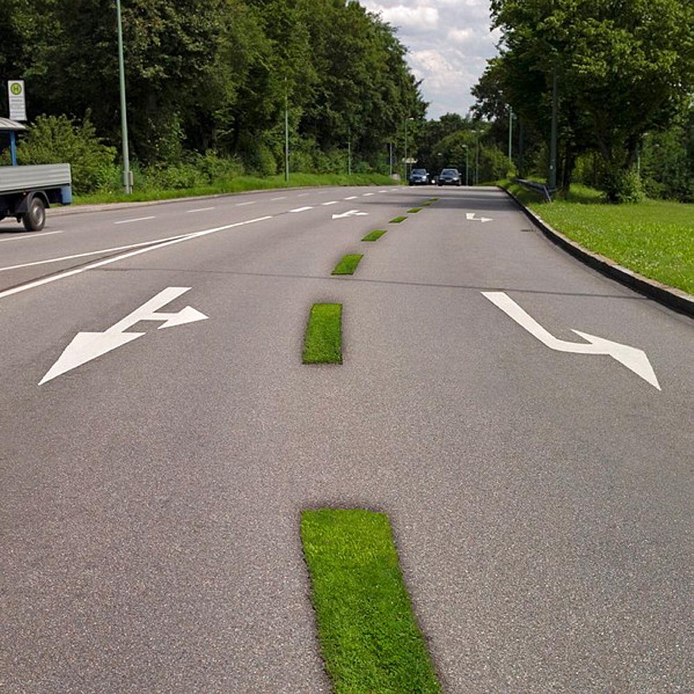 Grass stripes on road, Grass stripes on road