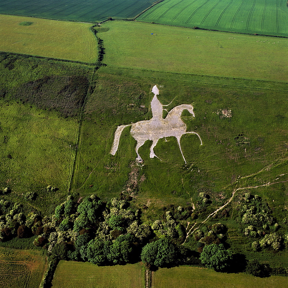 Aerial view of Osmington White Horse, Cherhill Downs, Osmington, Dorset, England, United Kingdom, Europe