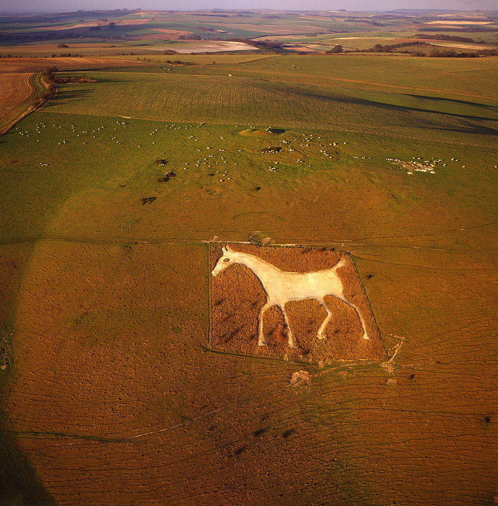 Aerial view of Alton Barnes White Horse, Alton Barnes, Wiltshire, England, United Kingdom, Europe