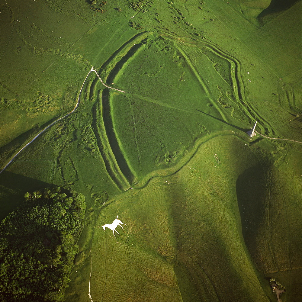 Aerial image of Oldbury Camp Hill Fort with Cherhill White Horse, Cherhill Down, Calne, Wiltshire, England, United Kingdom, Europe