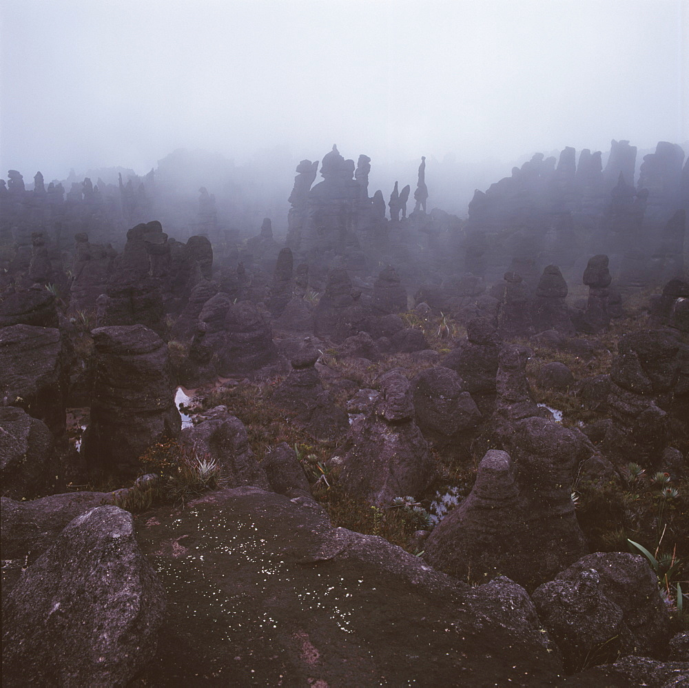 Rocks in the mist on the summit of Mount Kukenaam (Kukenan) (Cuguenan), Estado Bolivar, Venezuela, South America