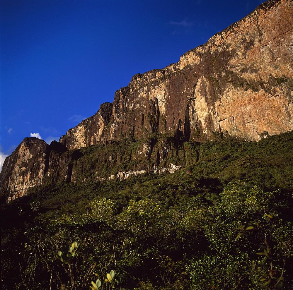 Ascent ledge on southwest cliff, Mount Roraima (Cerro Roraima), Tepuis, Estado Bolivar, Venezuela, South America