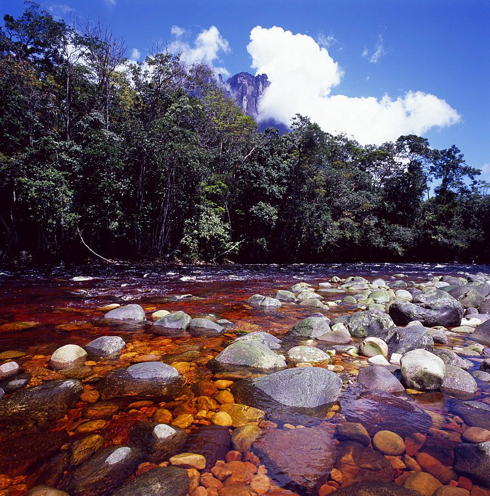 Churun River near base of Angel Falls, Churun Gorge, Auyantepui (Devil's Mountain), Canaima National Park, UNESCO World Heritage Site, Venezuela, South America