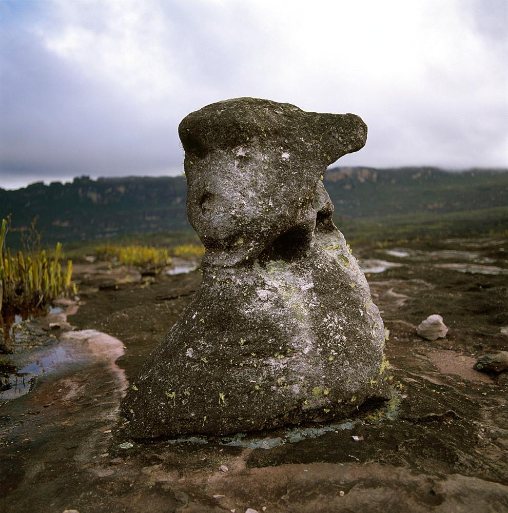 Oso rock (the bear), Auyantepui summit (Devil's Mountain), Canaima National Park, UNESCO World Heritage Site, Estado Bolivar, Venezuela, South America