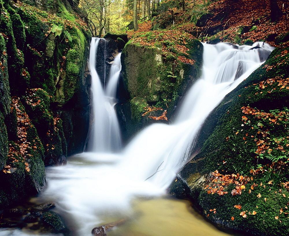 Little Hoellbach waterfalls near Goerwihl, Hotzenwald forest, Black Forest, Baden-Wuerttemberg, Germany, Europe