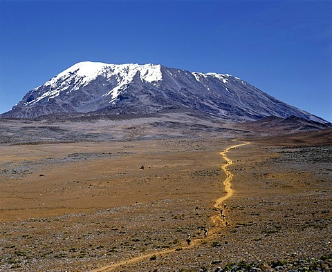 Path to Mount Kilimanjaro, Kilimanjaro National Park, UNESCO World Heritage Site, stratovolcano, Tanzania, East Africa