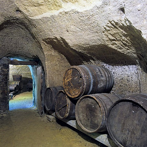 Rochemenier Departement Maine Loire France cave dwelling dug in shelly limestone now museum wine cellar winery gave the main income of the inhabitants of the caves