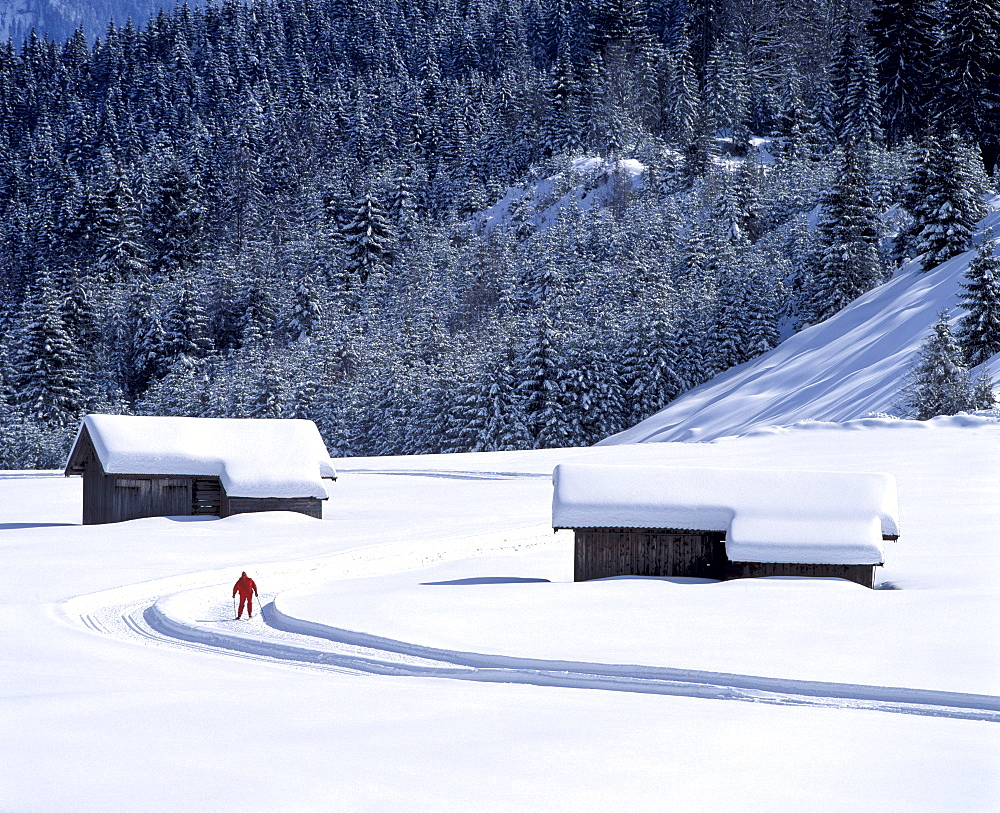 Winter landscape with cross-country ski run between Kaltenbrunn and Klais, Upper Bavaria, Germany