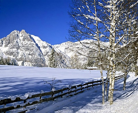 Leutaschklamm, Oefelekopf with Wetterstein wall, winter, Wettersteingebirge, Tyrol, Austria