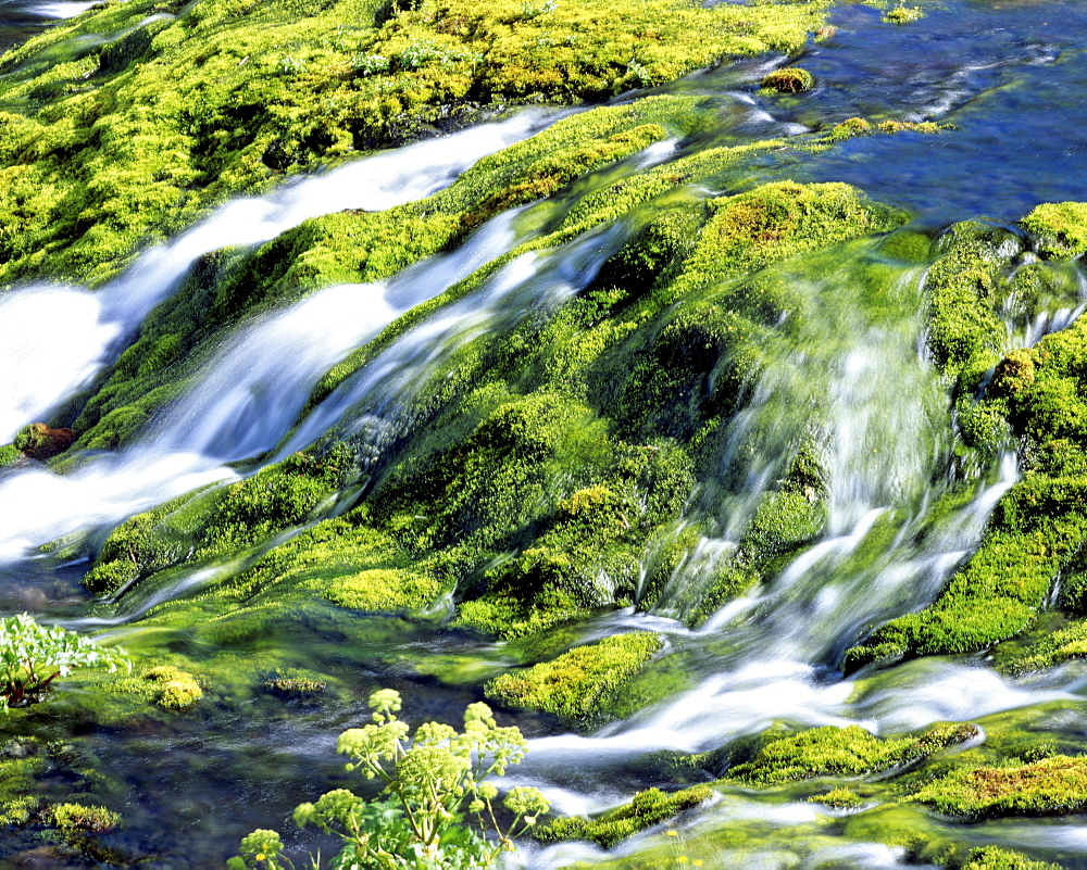 Small waterfall in a mountain stream with moss-covered rocks, Iceland