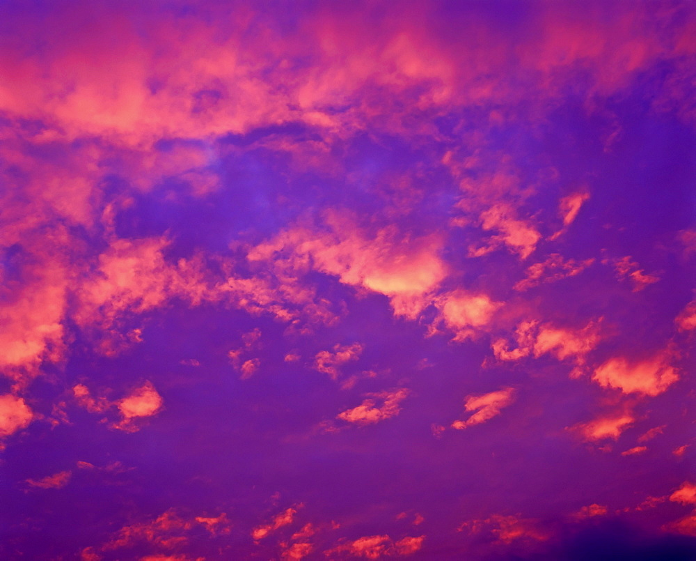 Pink clouds in an evening sky