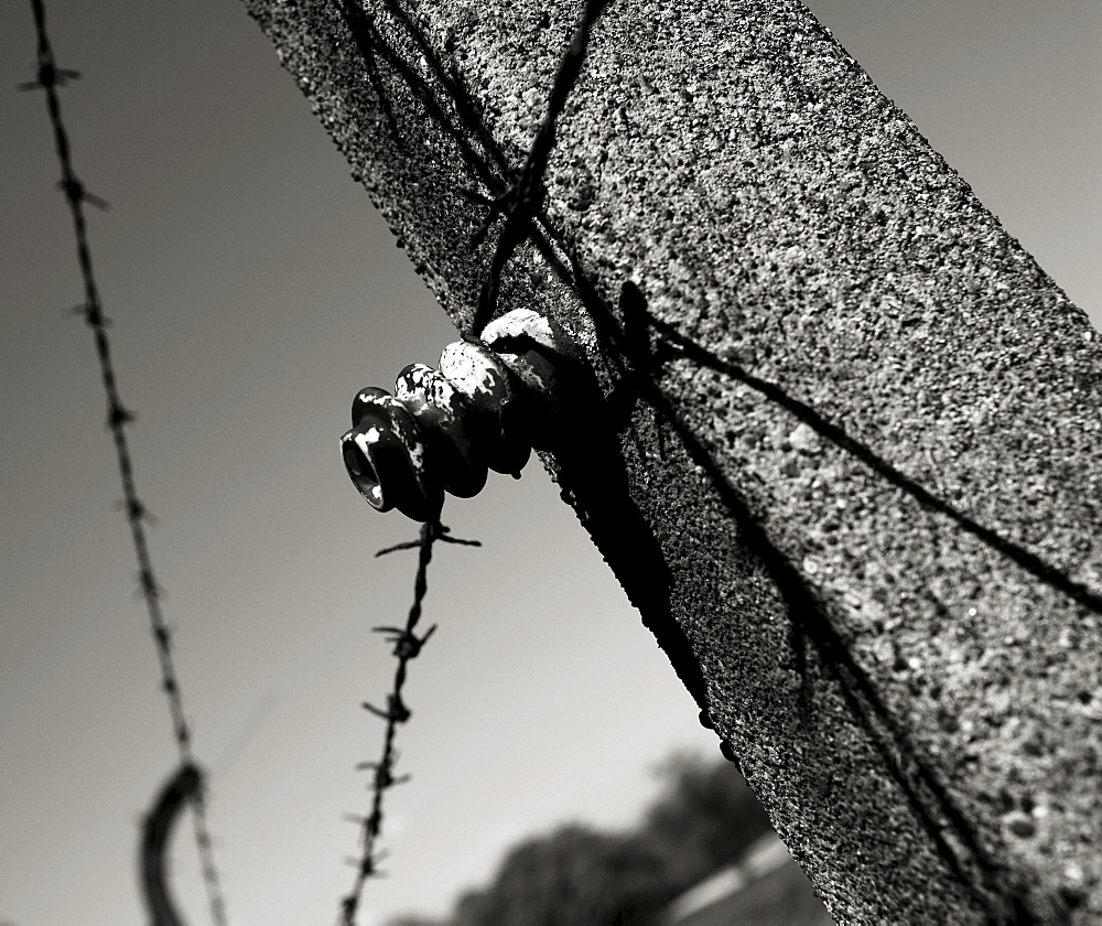 Camp fence with barbed wire at Buchenwald concentration camp, Weimar, Thuringia, Germany, Europe