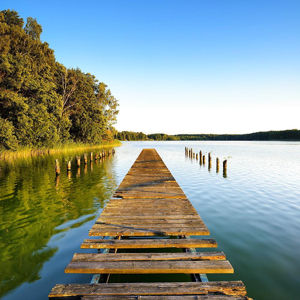 Old wooden footbridge at the lake Grosser Mullroser See, garbage rose, nature park Schlaubetal, Brandenburg, Germany, Europe