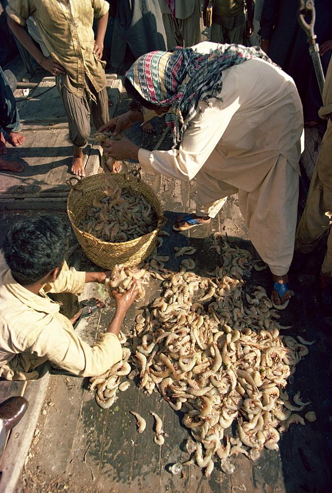 Fish market, Karachi, Pakistan, Asia