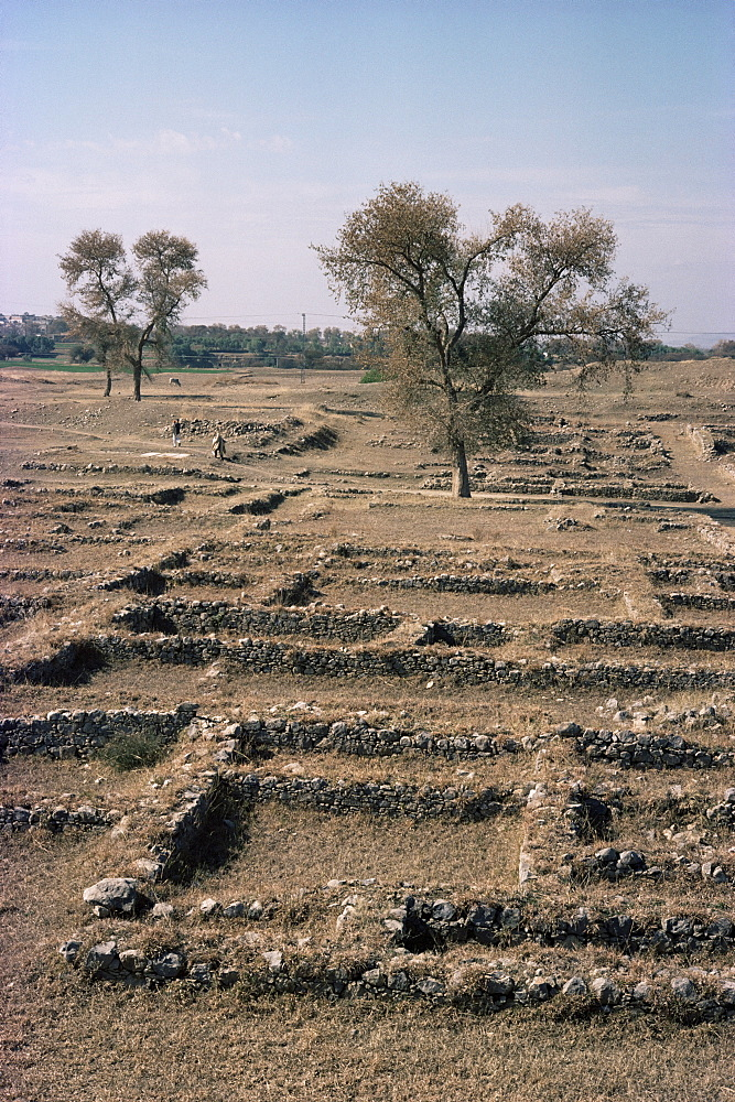 Sirkap, Taxila, UNESCO World Heritage Site, Pakistan, Asia