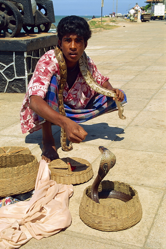 Snake charmer on the waterfront, Colombo, Sri Lanka, Asia