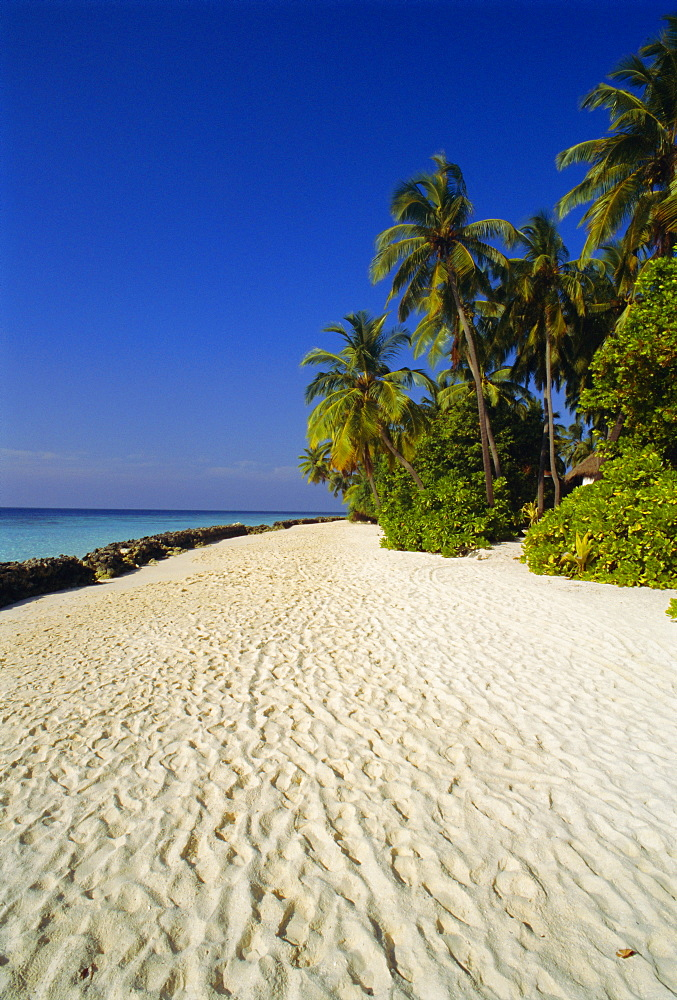 Beach, Nakatchafushi, Maldive Islands, Indian Ocean