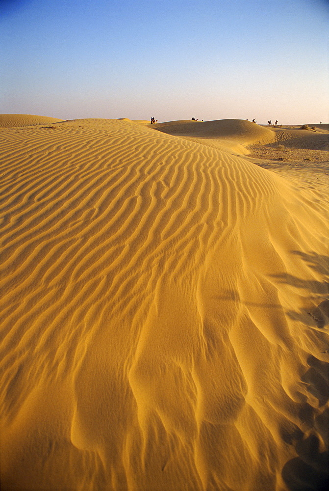 The Sam Sand Dunes at dusk, near Jaisalmer, Rajasthan state, India, Asia