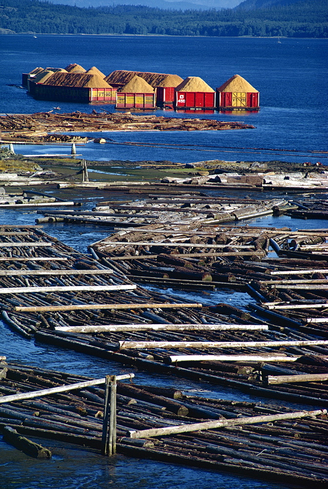 Logs booms on the Campbell River, British Columbia, Canada, North America - 1-879