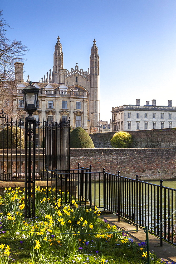 A view of Kings College from the Backs, Cambridge, Cambridgeshire, England, United Kingdom, Europe