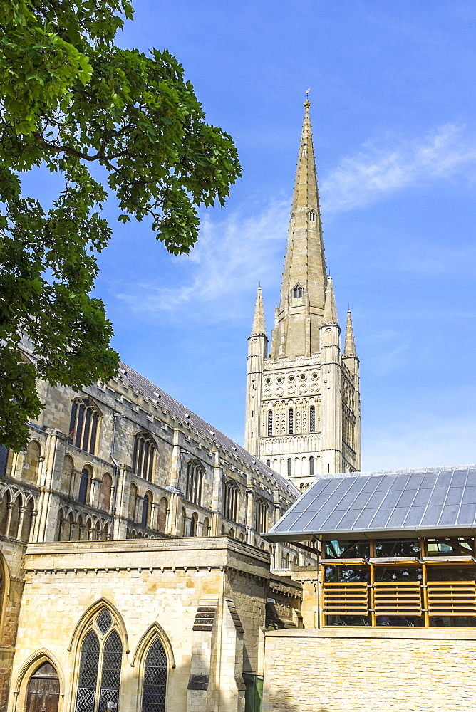 Norwich Cathedral, Norwich, England, UK, Europe - 10-378