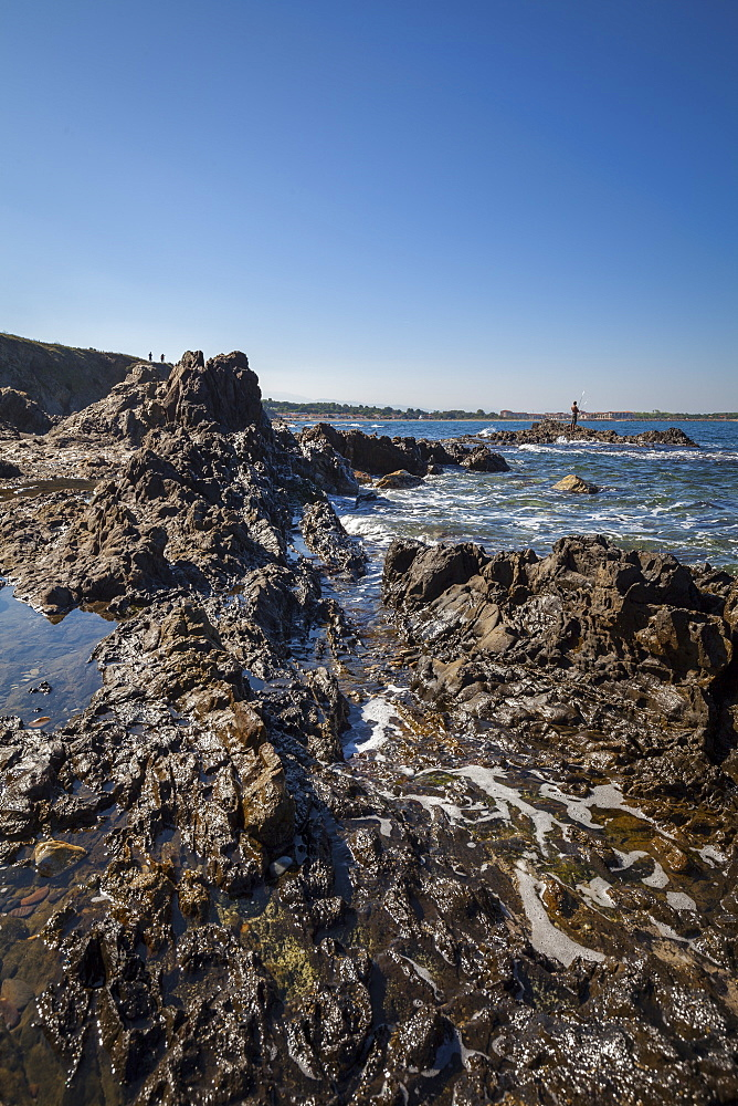 Rocky beach at low tide, Argelles, France, Europe - 10-426