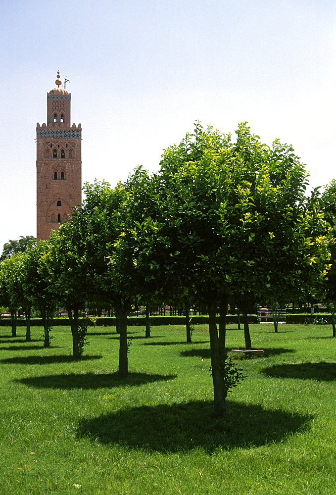 Koutoubia Mosque, Marrakesh, Morocco - 1024-229