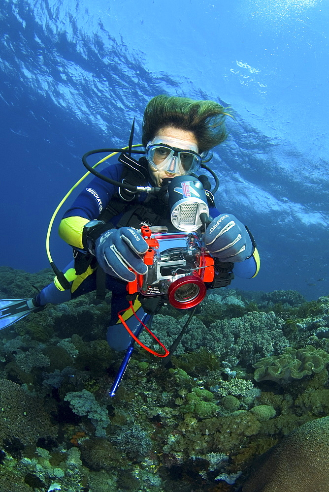 diver with compact camera, Indonesia - 1072-30