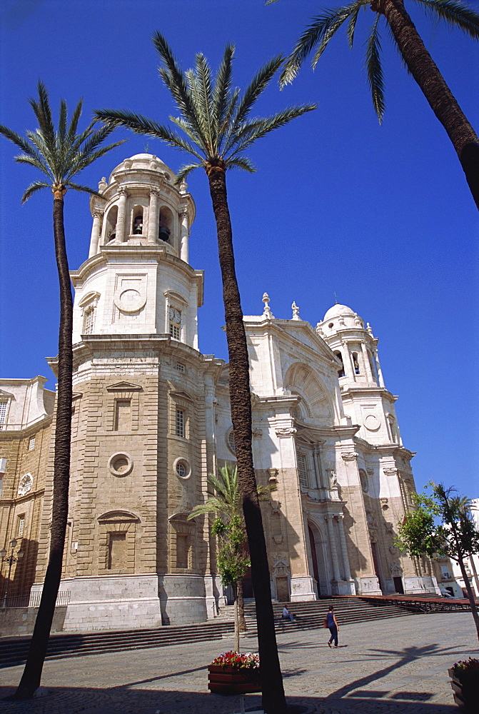 Cathedral, Cadiz, Andalucia, Spain, Europe - 11-930