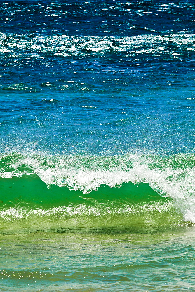 Small green wave, Strait of Gibraltar, Los Lances Beach, El Estrecho National Park Tarifa, Costa de la Luz, Andalucia, Spain, Europe - 1102-3
