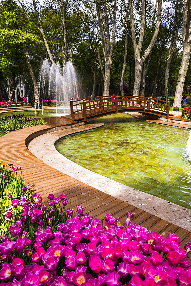 Tulips and fountains in Gulhane Park (Rosehouse Park), Istanbul, Turkey, Europe