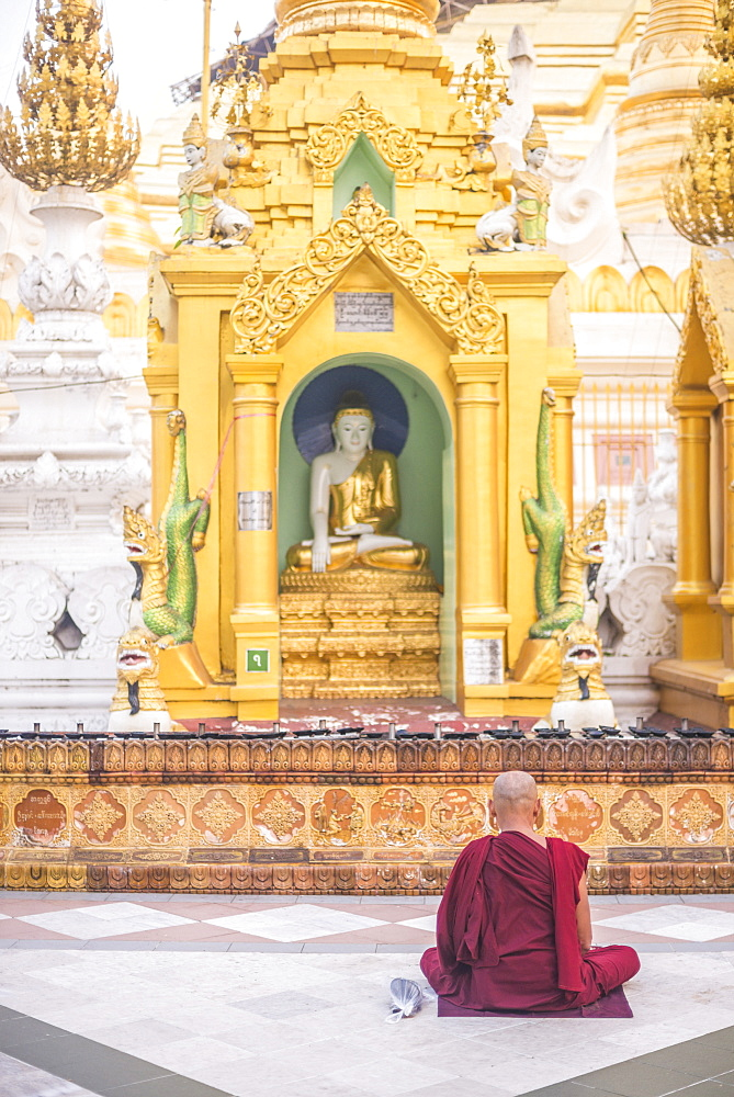 Buddhist monk praying at Shwedagon Pagoda (Shwedagon Zedi Daw) (Golden Pagoda), Yangon (Rangoon), Myanmar (Burma), Asia