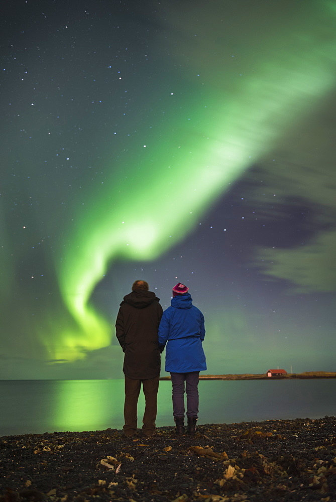Couple watching the Northern Lights (Aurora Borealis), Reykjavik, Iceland, Polar Regions