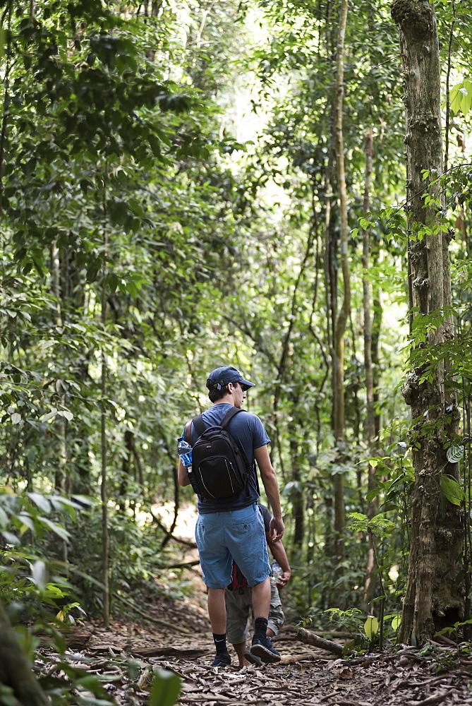 Tourist on a jungle trek in Gunung Leuser National Park, Bukit Lawang, North Sumatra, Indonesia, Southeast Asia, Asia