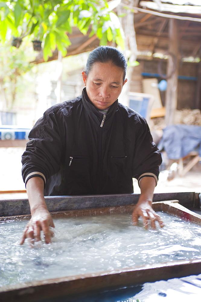 Woman making handmade paper in Luang Prabang, Laos, Indochina, Southeast Asia, Asia