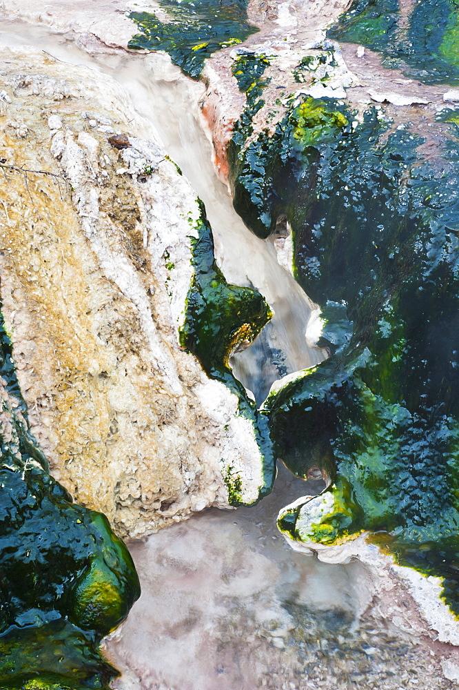Hot stream detail at Orakei Korako Thermal Park, The Hidden Valley, North Island, New Zealand, Pacific