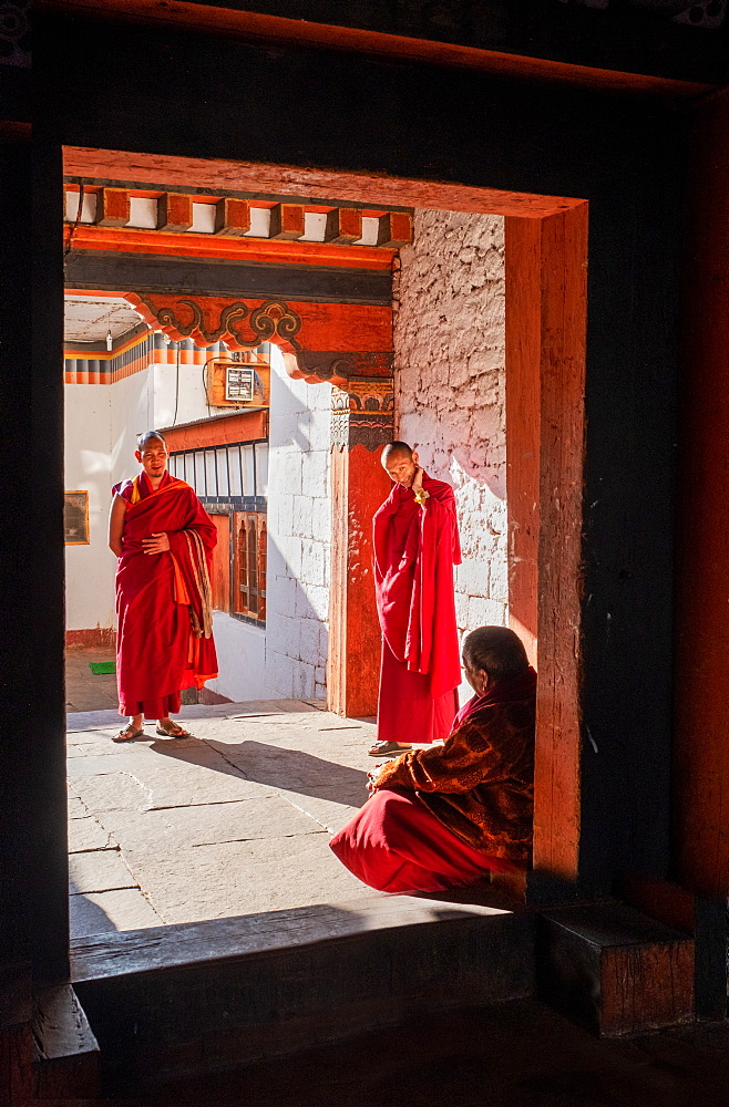 Bhutanese monks talk with head monk, Kyichu Temple, Bhutan, Asia