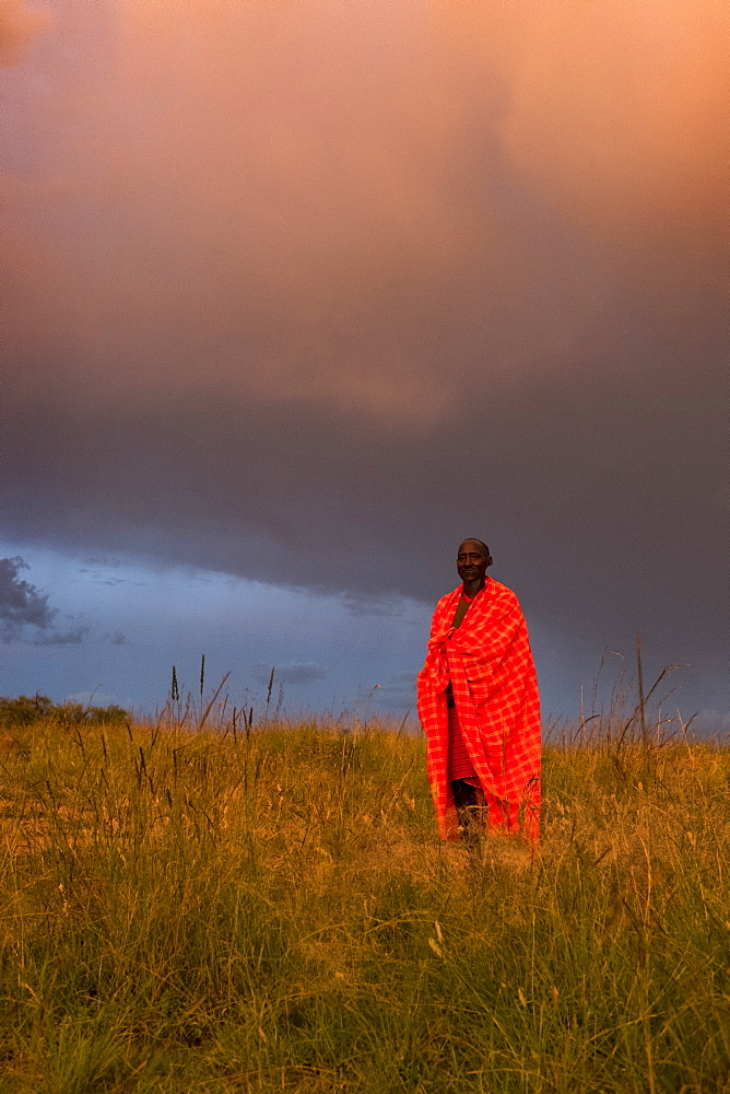 A Masai Mara man wearing traditional tribal red blanket, Masai Mara National Park, Kenya, East Africa, Africa - 1111-16