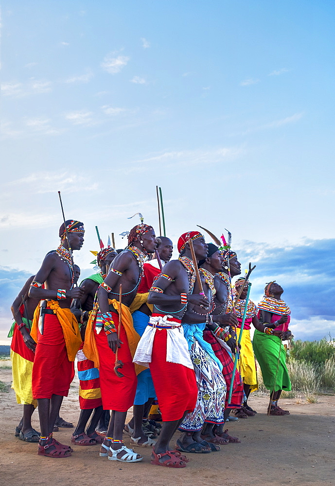 Portrait of Samburu tribe members dancing the traditional wedding dance at dusk, Kenya, East Africa, Africa - 1111-33