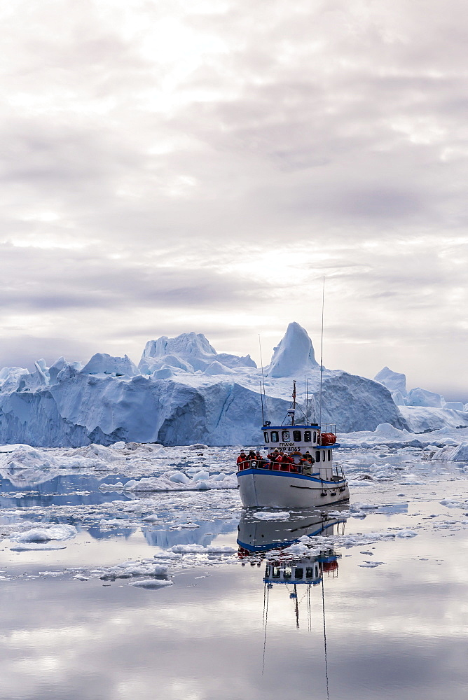 A commercial iceberg tour amongst huge icebergs calved from the Ilulissat Glacier, UNESCO World Heritage Site, Ilulissat, Greenland, Polar Regions
