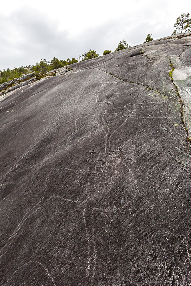 Leiknes Rock Paintings depicting deer, drawn by the ancestors of the Saami perhaps 9000 years ago, Leiknes, Troms, Norway, Scandinavia, Europe