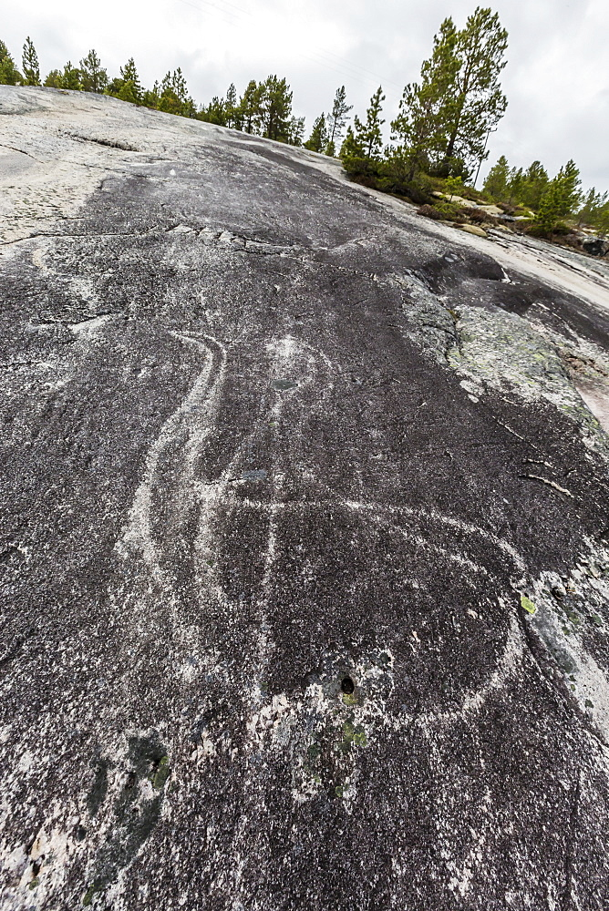 Leiknes Rock Paintings depicting two swans, drawn by the ancestors of the Saami perhaps 9000 years ago, Leiknes, Troms, Norway, Scandinavia, Europe
