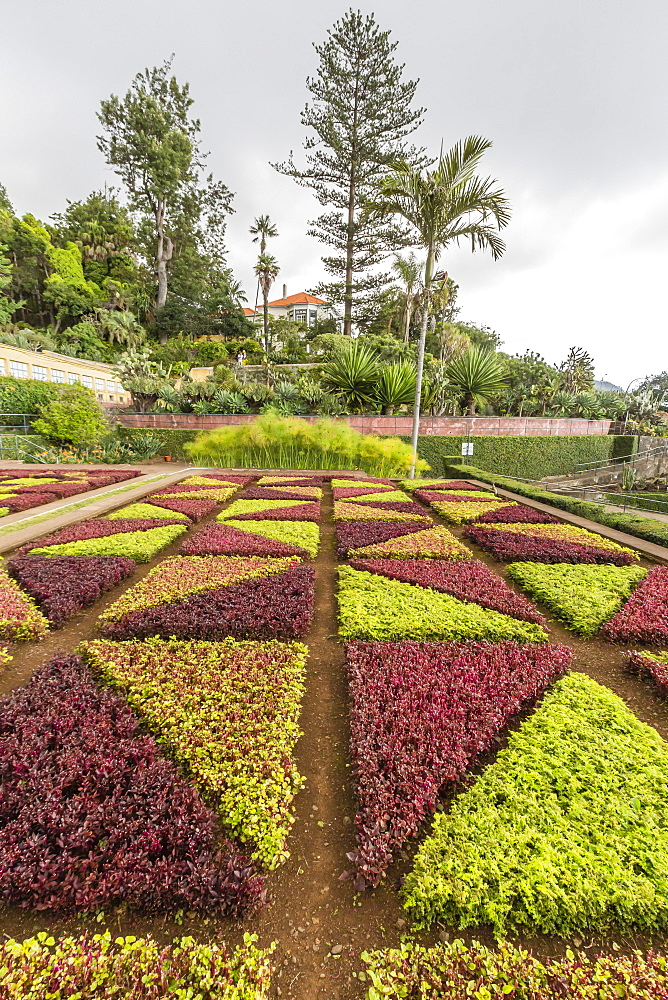A view of the Botanical Gardens, Jardim Botanico do Funchal, in the city of Funchal, Madeira, Portugal, Europe