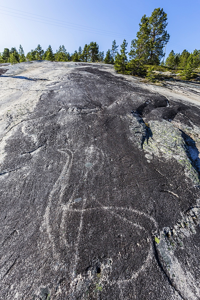 Animal forms in the 9,000 year old ground and polished stone age rock art at Leiknes, Norway.