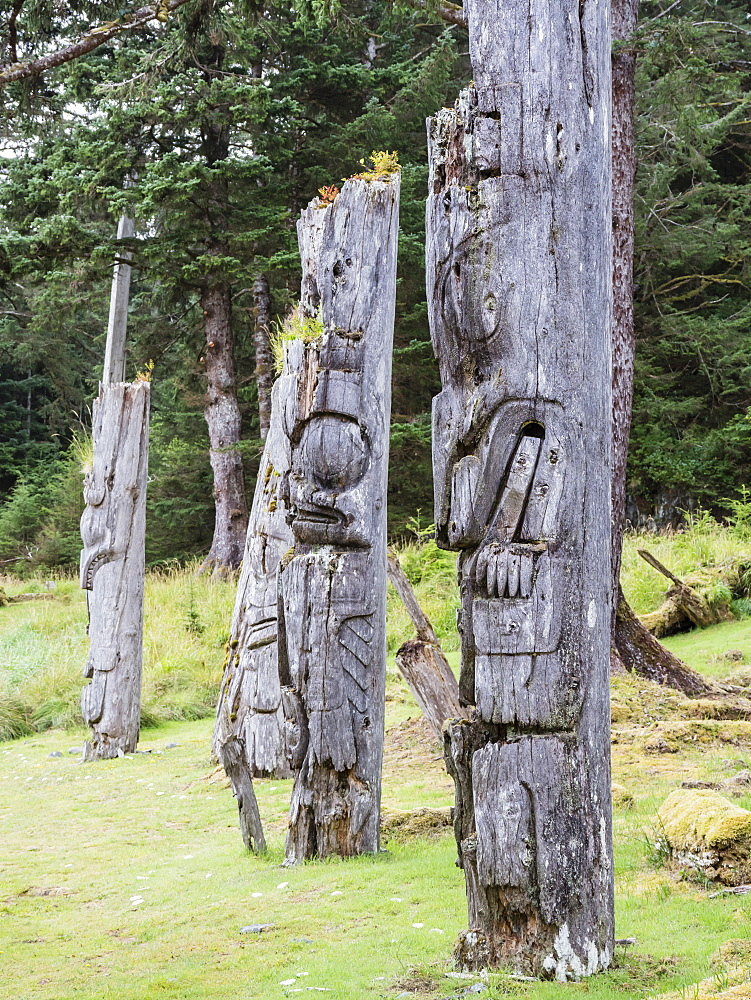 Totem poles at SGang Gwaay, UNESCO World Heritage Site, Haida Gwaii, British Columbia, Canada, North America - 1112-4201