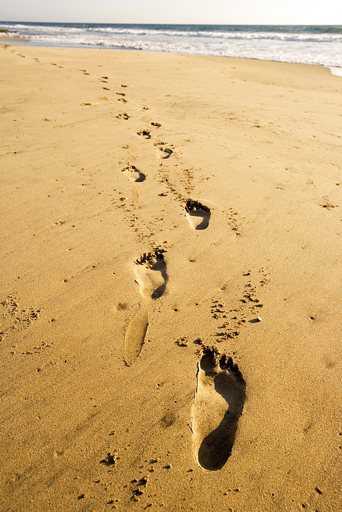 Footprints on the beach, Conejo beach, Baja California Sur, Mexico