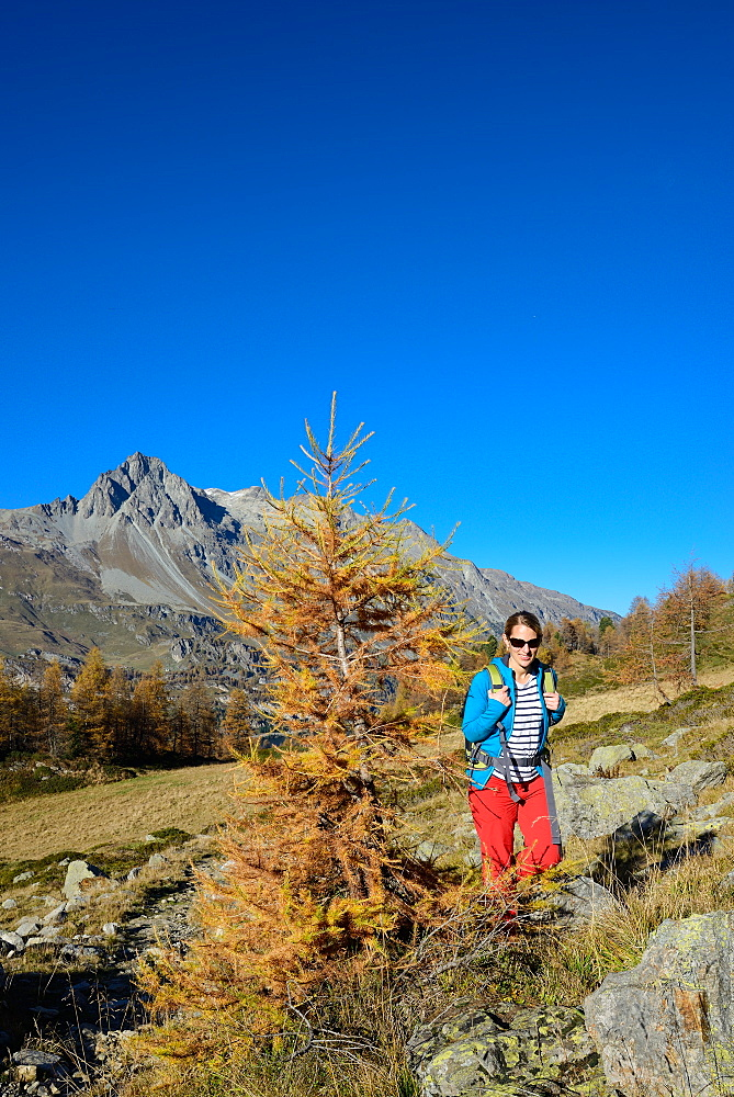 Woman hiking above Lake Sils with Piz Lagrev (3164 m) in the background, Engadin, Grisons, Switzerland