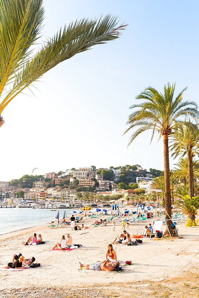 Beach with palm trees, Mediterranean Sea, Port de Soller, Serra de Tramuntana, Majorca, Balearic Islands, Spain, Europe - 1113-102232