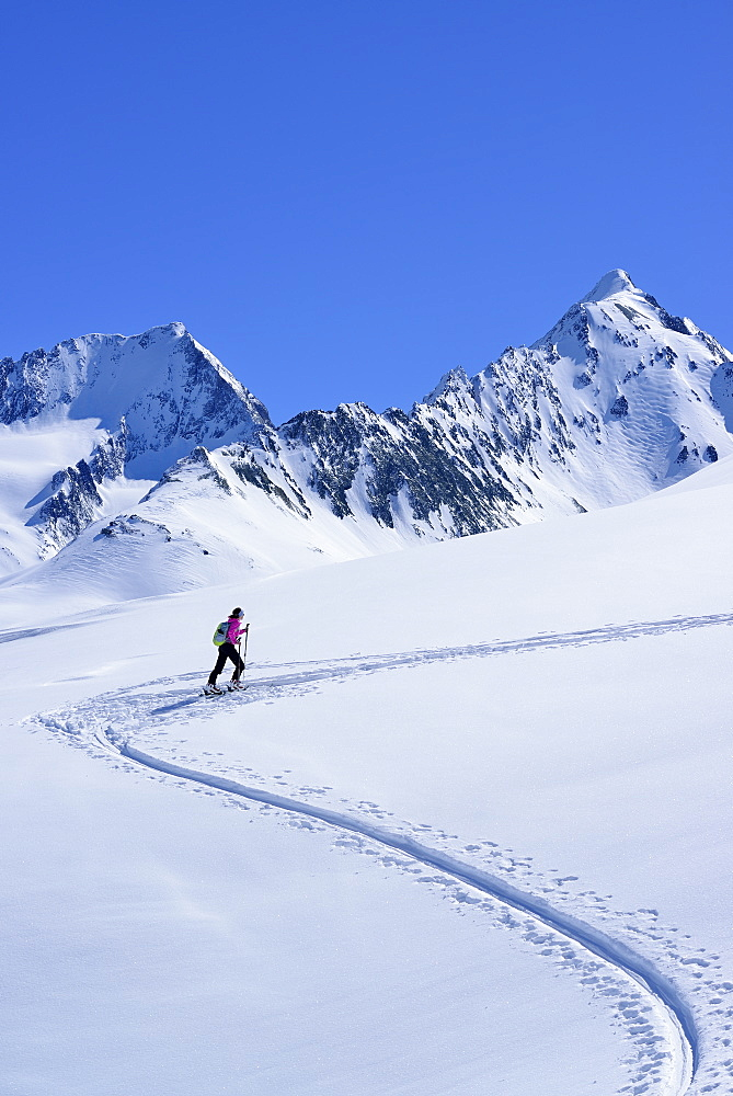 Female back-country skier ascending to Eiskoegele, Obergurgl, Oetztal range, Tyrol, Austria